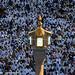 Over 1.5 million Muslims performing Eid prayer