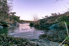 Sunset before X-mas (davidshred) Tags: d3300 nikon sunset december paradise water lövhagen ringvägen nynäshamn sigma 1020