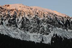 _TRW7500 Sunset on the Mountain (terrificphotos) Tags: juneauaalaska twinlakes dogs frost trees raven evergreen icecrystals hockey