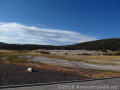 Upper Geyser Basin (Annes Travels) Tags: yellowstone wyoming uppergeyserbasin geysers geothermal