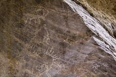 Marble Bath Sheep (W9JIM) Tags: w9jim dvnp deathvalley marblebath sheep rockart petroglyph 7d2 1635l