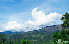 19/365 (Marcus Rosanegra) Tags: travel 365 colombia nature naturaleza pereira paisaje lan dscape