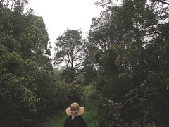 01425 (~maxi) Tags: mountworth dayhike hikingsociety moonlightridge lynn