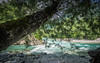 Im Schatten [Explored] (Ulmi81) Tags: slovenia slovenien soca koritnica bovec kajak river wasser water fluss bach wildwasser white summer sommer türkies baum baumstamm tree felsen kies rock stones