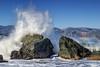 The splash (bodro) Tags: sanfrancisco landsend ocean rocks splash trail wave