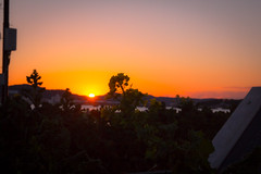 Tateyama city  / Canon EOS60D:SIGMA 17-50mm F2.8 EX DC OS HSM (telenity) Tags: japan landscape tateyama eos60d canon coast ocean flower 日本 館山 風景 菜の花 sunsets