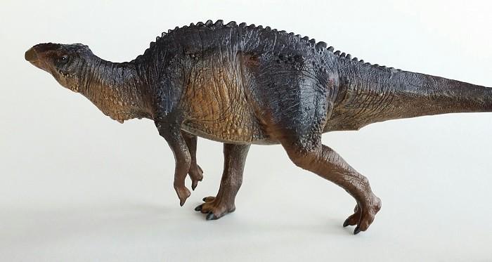 Ornithopod Dinosaurs Toys Wwwpicsbudcom