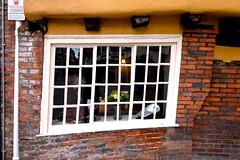 Wonky Window (HWW!) (violetchicken977) Tags: windowswednesday hww shambles york distorted