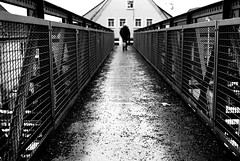 Drag behind (Nikon FE2) (stefankamert) Tags: meinfilmlab wwwmeinfilmlabde stefankamert street bridge bw baw blackandwhite blackwhite noir noiretblanc monochrome nikon fe2 nikonfe2 fe kodak trix film analog reflections grain nikkor