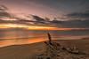 Il tramonto di Marina di Vecchiano 2 (Nico Angeli) Tags: vecchiano mare paesaggi tramonti
