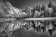 Half Dome from Merced River b&w (Daniel Schwabe) Tags: river reflection mountain tree valley longexposure bw halfdome merced yosemite california ca usa travel adventure nature tourism