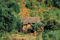 Native Dwelling, Sơn La Vietnam (AdamCohn) Tags: 122kmtobnnahayinsnlavietnam adamcohn bnnahay snla sơnla vietnam geo:lat=21425081 geo:lon=103724447 geotagged hills karst mountains nativedwelling nativehome traditionalhome wwwadamcohncom phổnglăng
