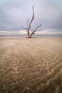 Muted Ripples...  Capers Island, South Carolina [Explored]