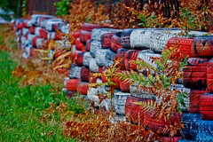 Tyres (Vitaly Goreglad) Tags: race latvia colored riga tyres lettland latvija  bikernieki  canon700d    vitalygoreglad