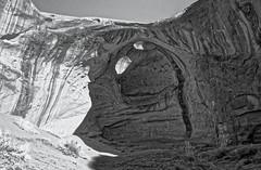 IMG_6781_B&W_DxO (dfwtinker) Tags: arizona utah desert arches monumentvalley navajonationreservation phillipsphotographytoursraybegay