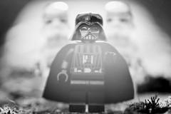 Lord Vader Returns (steved_np3) Tags: starwars star wars lego toy figures stormtrooper stormtroopers vader darth macro