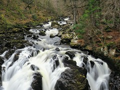 The Falls at the Hermitage. (Flyingpast) Tags: nature river falls rocks water torrent perthshire scotland beauty highlands spectacular winter fallsofbrann woods waterfall blacklinnfalls dunkeld hermitage scenic walk outdoors forest woodland visitscotland wild rugged