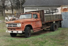 Vintage Dodge (Dave* Seven One) Tags: dodge truck dodgetruck worktruck classic vintage rusty rust rot decay junk dead wood steakside