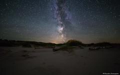 Old Timber On The Beach (zackesvensson) Tags: gotskasandön gotland sweden scandinavia samyang canon longexposure iso highiso astrophoto astrography landscape nightscape night naturephotography