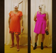 going out   364/366 (horsesqueezing) Tags: 366the2016edition 3662016 day364366 29dec16 mask rabbit poodle dress party nightout drinking heels
