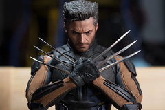 DSC_6609 (Quantum Stalker) Tags: xmen wolverine mutant hot toys days future past scale hugh jackman adamantium claws skeleton indestructible