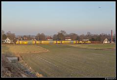 NSR 7376 + 1749 - 5550 (Spoorpunt.nl) Tags: 22 januari 2017 ddar stam 7376 ns reizigers 1749 trein sprinter 5550 soestdijk soest