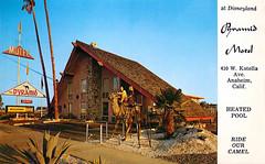 Pyramid Motel postcard, 410 W. Katella Ave, Anaheim California (Tom Simpson) Tags: pyramidmotel motel vintage camel disney disneyland vintagedisney vintagedisneyland hotel postcard travel 1960s