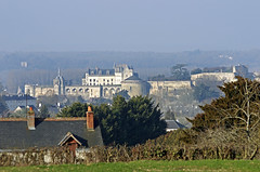 Amboise (Indre-et-Loire) (sybarite48) Tags: amboise indreetloire france château burg castle قلعة 城堡 castillo κάστρο castello 城 kasteel zamek замок castelo kale