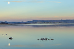 Soft tones and the moon reflection in the Mono Lake (Daniel Vicario) Tags: