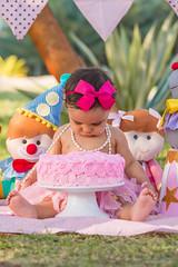 Smash-the-Cake-0115