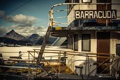 Barracuda (hapePHOTOGRAPHIX) Tags: 032arg américadelsur argentina argentinien boot feuerland nikond750 schiff schifffahrt southamerica südamerika tierradelfuego transport ushuaia boat hapephotographix marine ar dsplyys 999shp