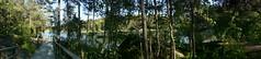 My favorite walk (annesjoberg) Tags: panorama lake green nature walk fotosondag fs150607