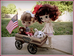 Violet and Scarlet on the 4th of July