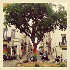 Rainbow Tree (Dirk Desmet) Tags: brussels tree rainbow bruxelles brussel breien rainbowtree wildbreien