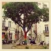 Rainbow Tree (Dirk Desmet) Tags: brussels tree rainbow bruxelles brussel breien rainbowtree wildbreien