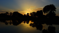 Sundown June 30, 2015 (Jim Mullhaupt) Tags: pink blue sunset red wallpaper sky orange sun lake color reflection tree water weather silhouette yellow clouds landscape gold evening pond nikon flickr sundown florida dusk palm exotic p900 tropical coolpix bradenton endofday mullhaupt nikoncoolpixp900 coolpixp900 nikonp900 jimmullhaupt