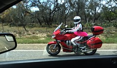 Riding Around Texas While Wearing a Tutu (thor_mark ) Tags: trees nature highway motorcycle day7 tutu iphone lookingoutwindow project365 pinktutu colorefexpro iphonecamera ushwy290 capturenx2edited usroute290