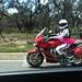Riding Around Texas While Wearing a Tutu