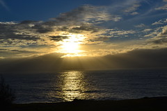 Easter Dawn Service Watsons Bay 2015 035