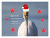 """Happy Christmas and New Year..."" (Mykel46) Tags: goolwasouth southaustralia australia au happy christmas new year canon 5dmk4 500mmf4 2xtele birds egret white eastern fish food funny hat red"