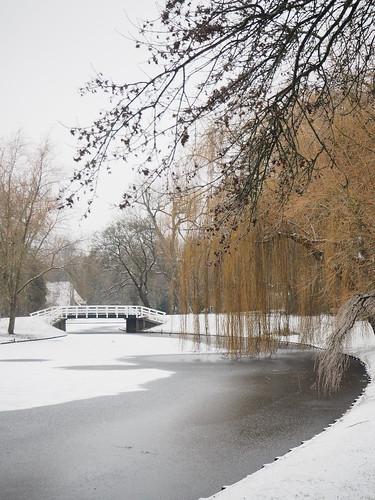 Besneeuwd stadspark, Kampen