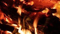 Sinterklaas Avond 2016 (Skip Staheli CLOSED FOR CLIENTS) Tags: sinterklaas dutch holidays gifts surprise family falbalafairey delindastaheli skippyberesford skipstaheli video happy secondlife sl inworld children laughing