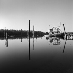 - At the docks - (Tom Findahl) Tags: calm water boats docks mamiya c330s tmax 100 outdoor monochrome