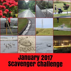 January 2017 collage (Weld with Rob) Tags: fdsflickrtoys sc117 bighugelabs