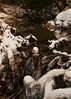 Clear Stream (spencerwalton) Tags: rocks rocky reflection rays rain trail snow ice nikon d3300 ontario nature sunlight sun sky stream river channel depthoffield outdoor cold stoney island animal photo portrait photography aperture shutter iso grain noise texture trees tree forest explore lake lakes space line shape time dslr reflections