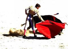 Polvo (aficion2012) Tags: arles novillada septembre 2016 blohorn jalabert corrida france francia andy younes novillero faena toros bull fight bullfight toreaux muleta