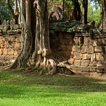 Tree growing into the wall of the temple ruin at Prasat Mueang Singh historical park in Kanchanaburi, Thailand thumbnail