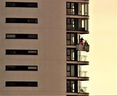 Tall 'Storeys' (howell.davies) Tags: millennium tower swansea wales uk balcony people building tallest maritime quarter cradle gondola nikon d3200 tamron 70300mm maintenance height high architecture