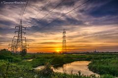 Sunset at Pallikarani Marsh Land (Saravanan Ekambaram) Tags: blue sunset sky india green grass dawn dusk madras land marsh chennai hdr tamilnadu velachery omr pallikaranai chennaione