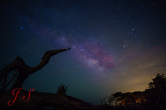 Driftwood Beach Milky Way-14 (dannygnx4) Tags: beach way island sony driftwood 12mm milky jekyll f20 rokinon a6000